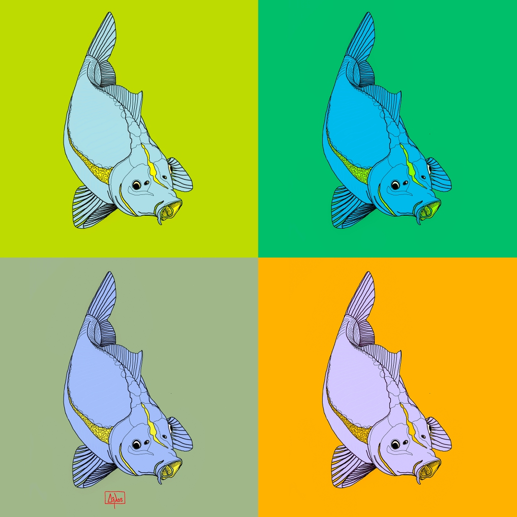 fish profile composite2