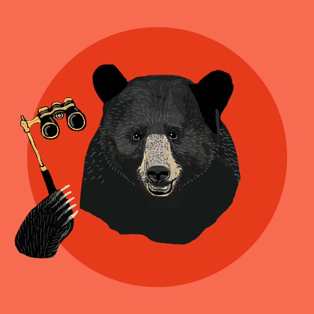 bear12