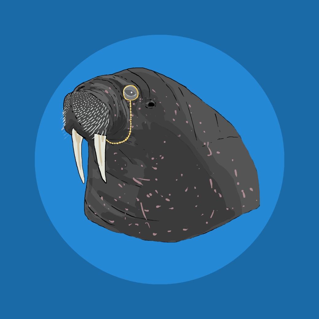 walrus monocle7